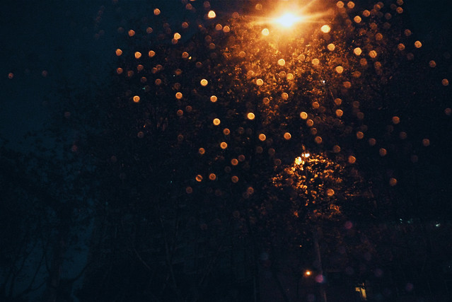 christmas-abstract-dark-nature-desktop picture material