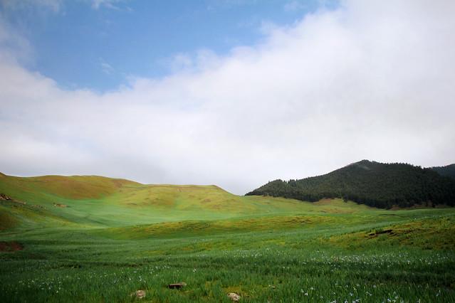 landscape-nature-no-person-grassland-sky 图片素材