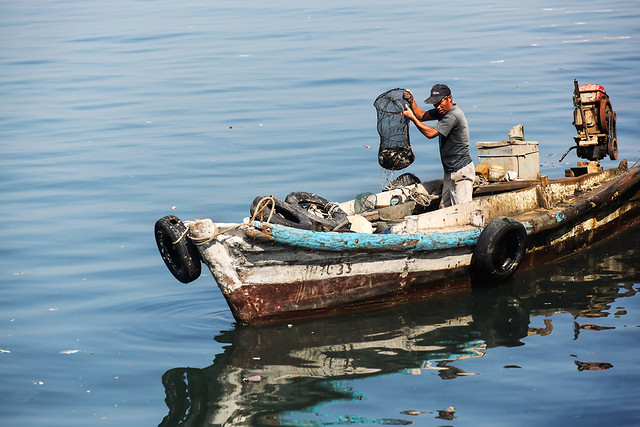 water-watercraft-vehicle-fisherman-boat picture material