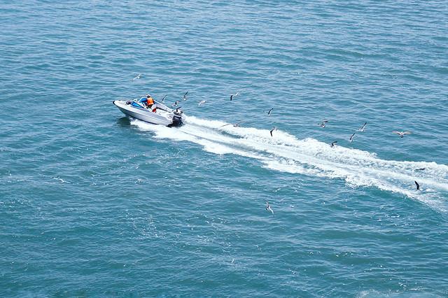 water-sea-watercraft-boat-ocean picture material
