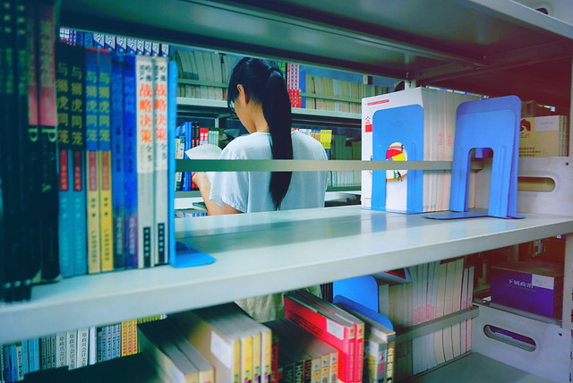 shelf-bookcase-library-indoors-education picture material