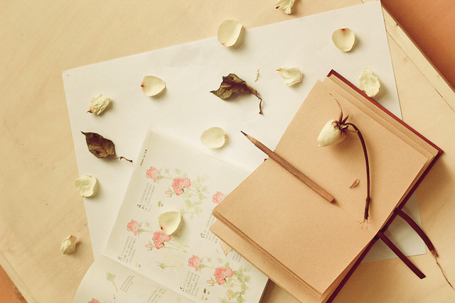 no-person-paper-still-life-table-love picture material