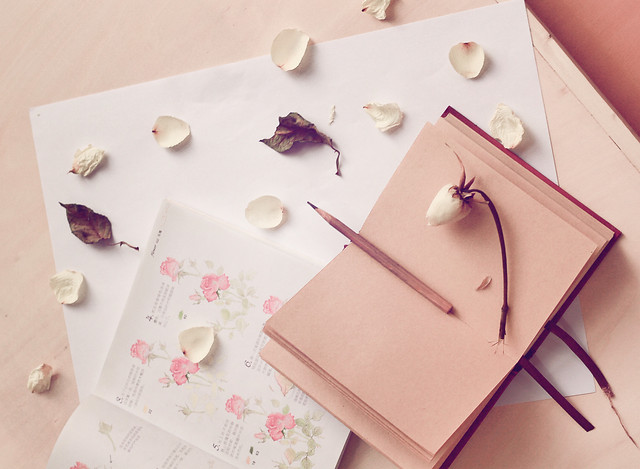 no-person-paper-love-still-life-note picture material