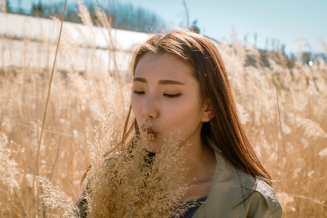 nature-outdoors-fair-weather-fall-hair picture material