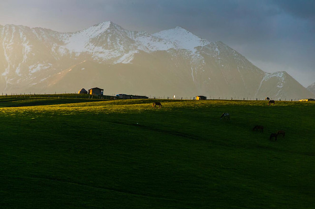 landscape-mountain-grassland-nature-travel picture material