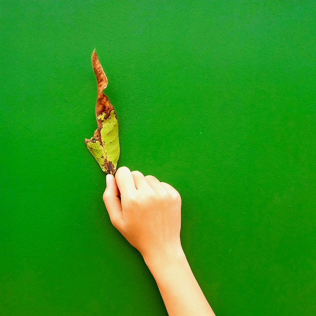 green-woman-conceptual-one-people picture material