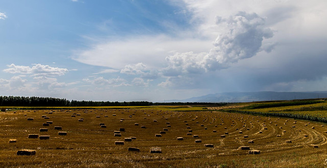 no-person-agriculture-landscape-sky-nature 图片素材
