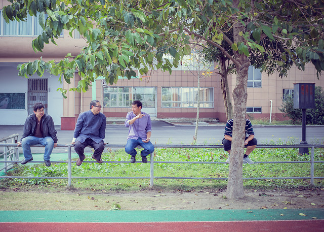 people-tree-family-child-bench picture material