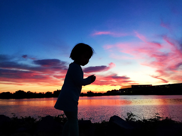sunset-dawn-water-sky-lake picture material