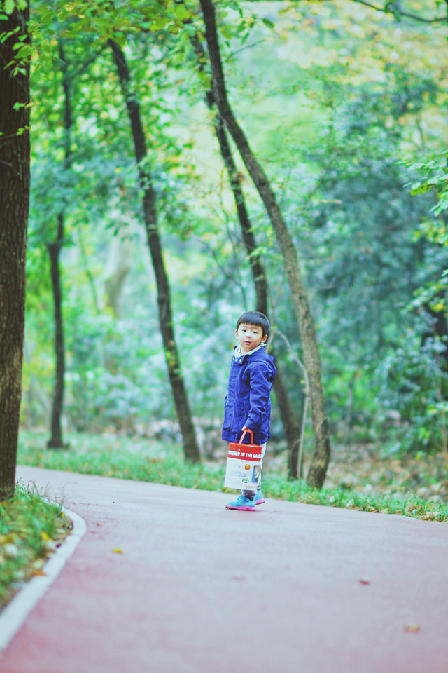 nature-child-wood-park-green picture material