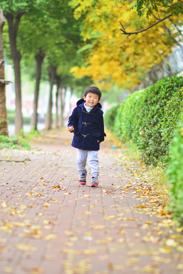 fall-park-nature-girl-child picture material