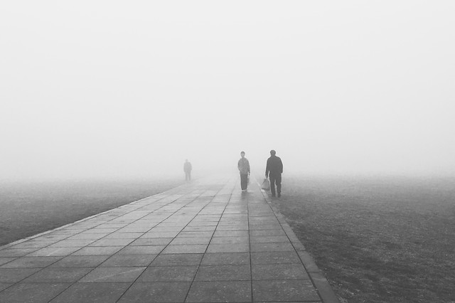 fog-people-monochrome-mist-dawn picture material