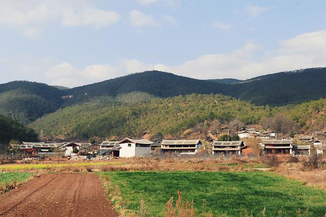 no-person-house-travel-cropland-tree 图片素材
