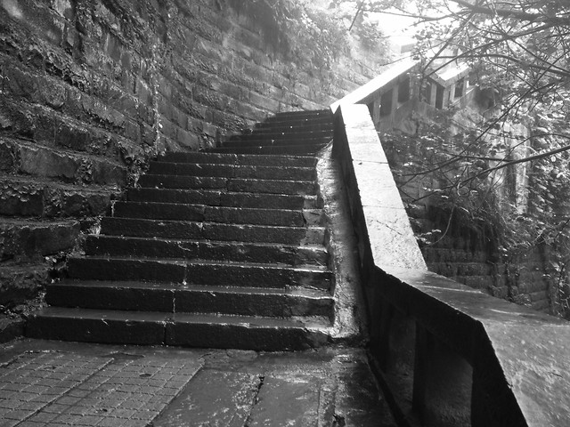 step-no-person-wood-light-black picture material
