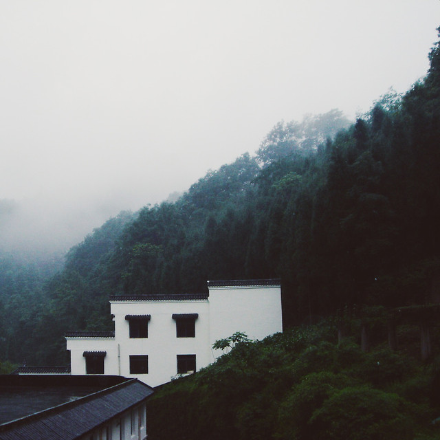 no-person-tree-fog-mountain-house picture material