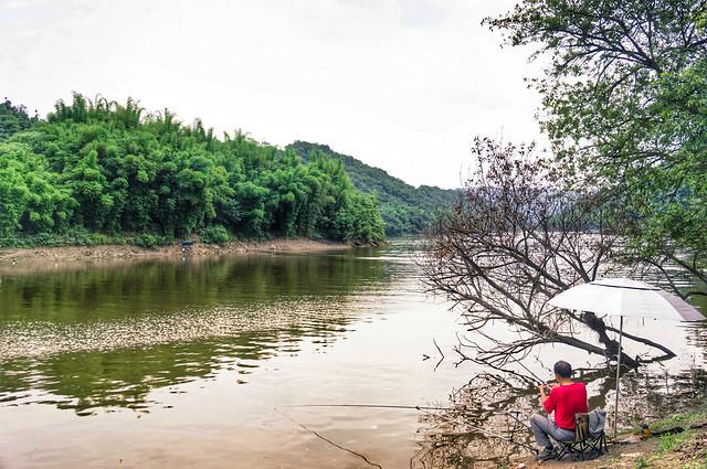 water-nature-landscape-tree-lake 图片素材
