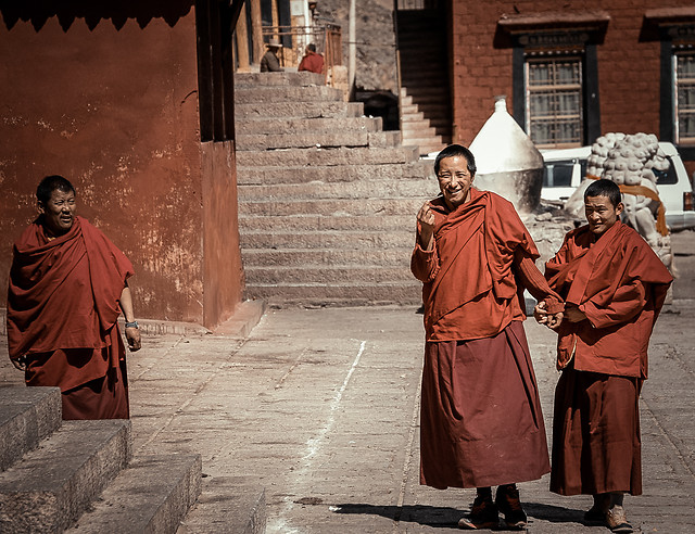monk-people-religion-adult-gown-(clothing) picture material