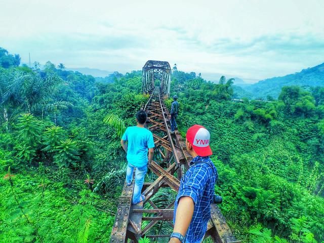 nature-wood-travel-tropical-mountain 图片素材