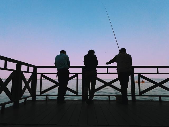 people-man-beach-bridge-recreation picture material