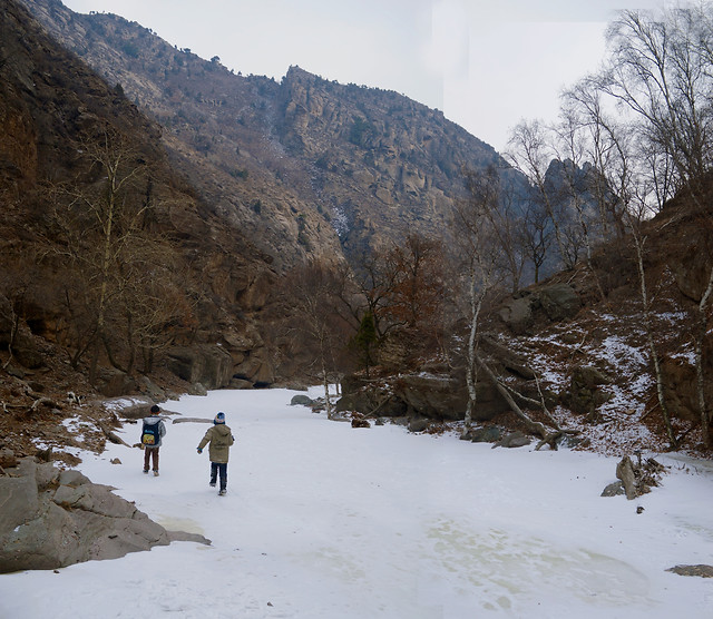 snow-winter-cold-mountain-landscape picture material