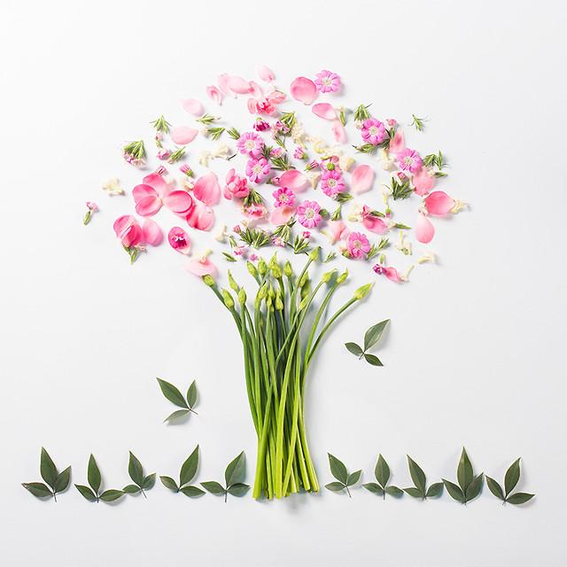 flower-nature-flora-bouquet-floral 图片素材