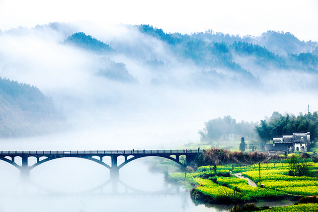 bridge-landscape-water-river-nature picture material