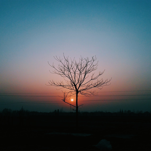 sunset-silhouette-landscape-dawn-evening picture material