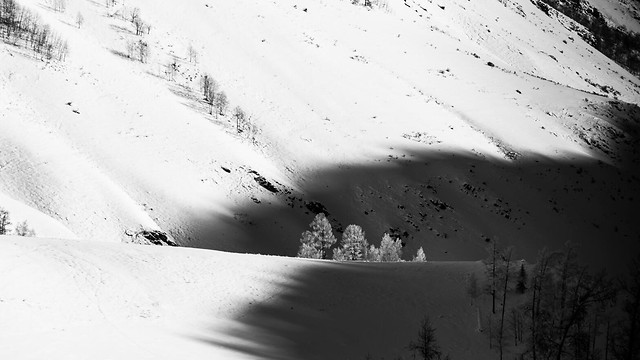 snow-winter-no-person-landscape-monochrome picture material