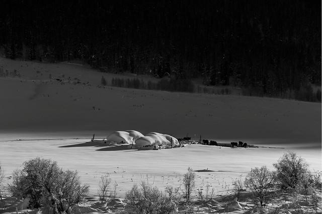 snow-landscape-winter-lake-no-person picture material