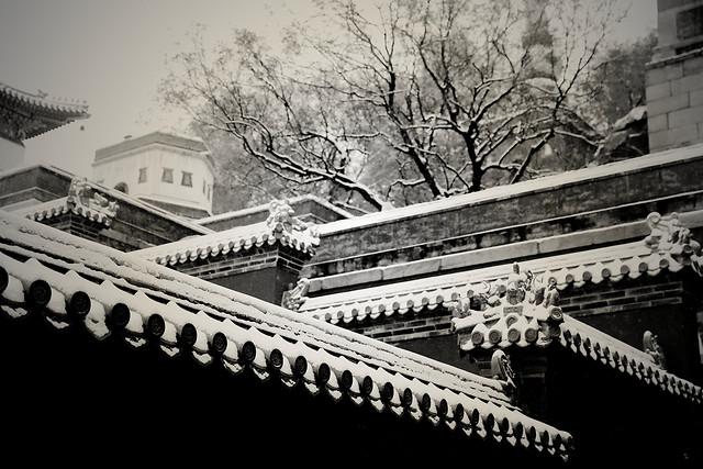 architecture-travel-city-building-monochrome picture material