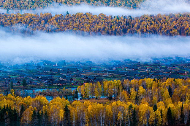 landscape-nature-fall-no-person-wood 图片素材