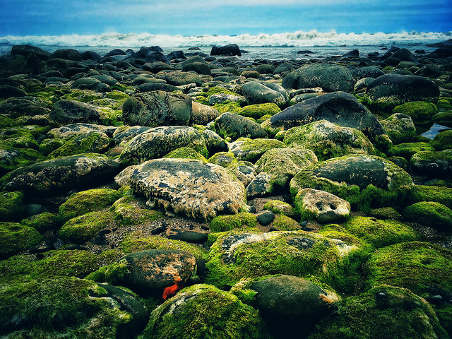 water-landscape-rock-sea-seashore picture material