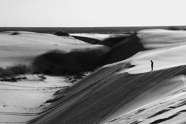 landscape-monochrome-no-person-beach-desert picture material