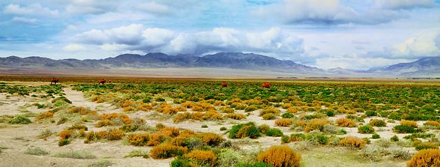 landscape-nature-no-person-sky-ecosystem 图片素材