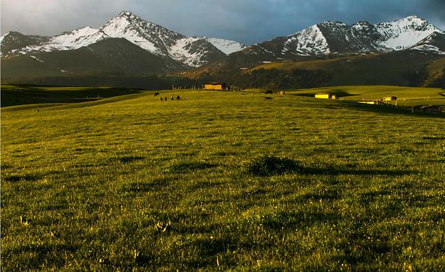 landscape-nature-mountain-no-person-grassland picture material