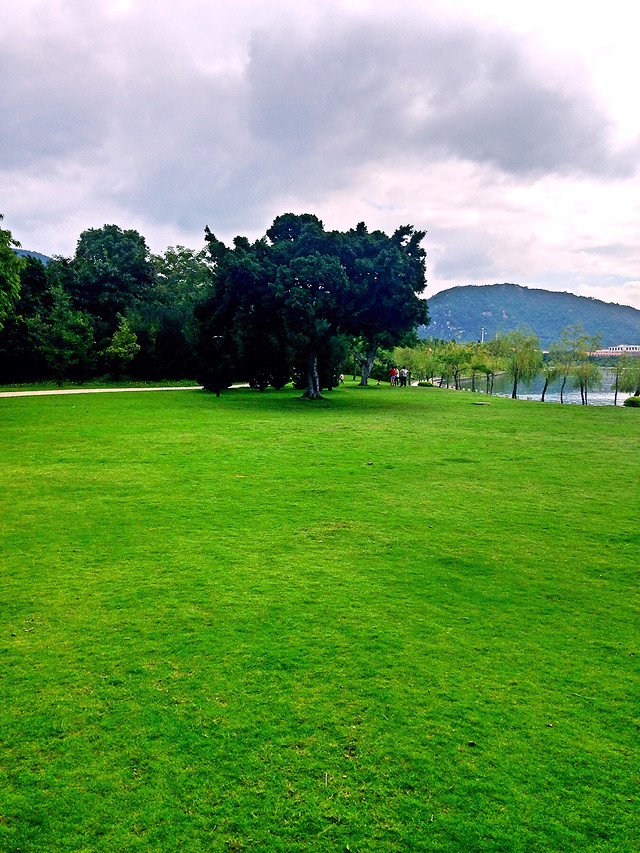 grass-lawn-golf-landscape-grassland picture material