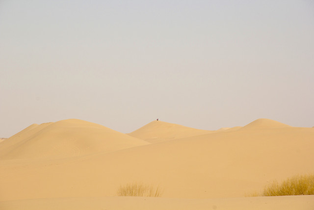desert-dune-sand-sunset-dawn picture material
