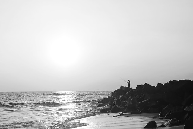 water-beach-sea-monochrome-ocean picture material