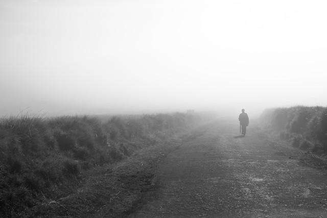 fog-landscape-people-mist-monochrome picture material