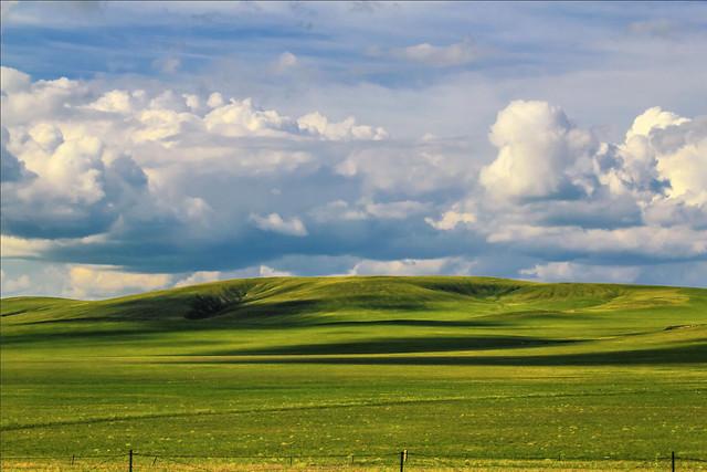 landscape-no-person-nature-grassland-rural 图片素材