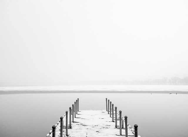 fog-water-monochrome-lake-beach picture material