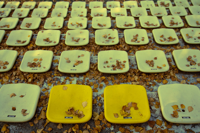 no-person-yellow-food-desktop-cake picture material
