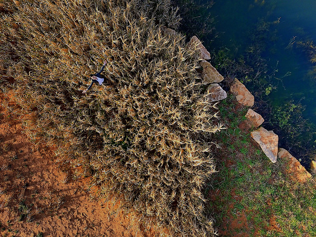 no-person-nature-vegetation-landscape-rock picture material