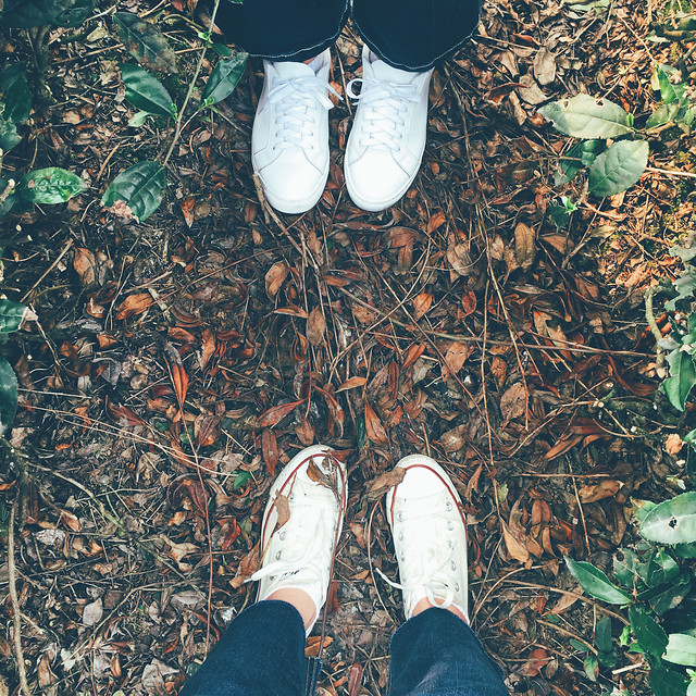 people-footwear-leaf-person-one picture material