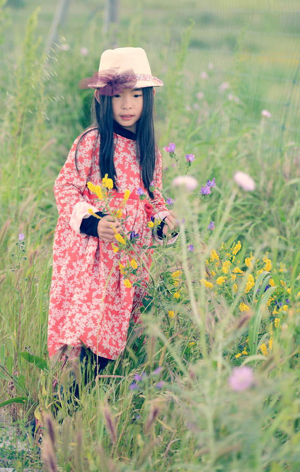 nature-grass-outdoors-summer-child 图片素材