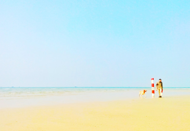 sand-beach-water-summer-sea picture material