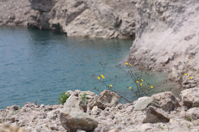 water-nature-no-person-rock-seashore picture material