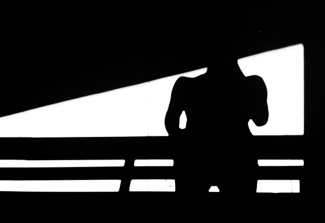 silhouette-white-black-black-white-shadow picture material