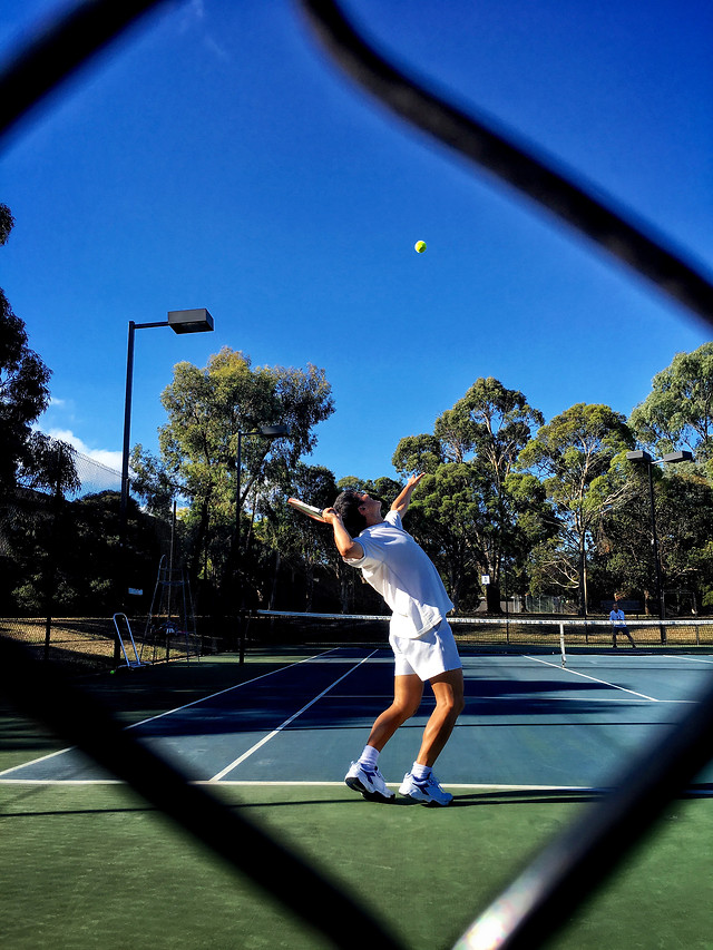 ball-competition-tennis-athlete-blue picture material