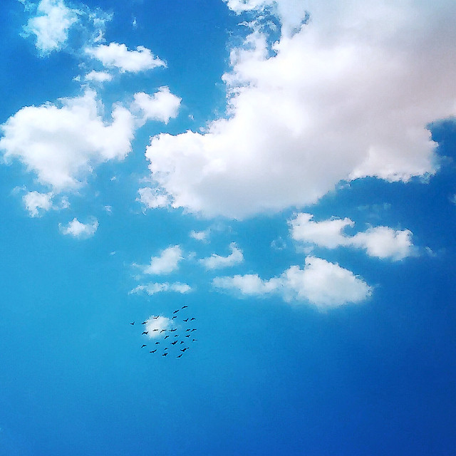 sky-weather-nature-fair-weather-heaven picture material